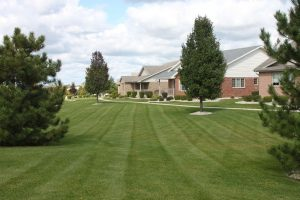 Nogas Landscaping- Mowing Trimming and Edging