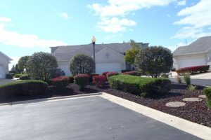 Nogas Landscaping- bushes and shrub service