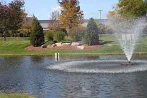 Nogas Landscaping- Pond Service